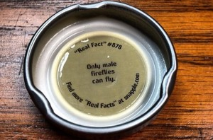 web design las vegas | seo las vegas | snapple fact