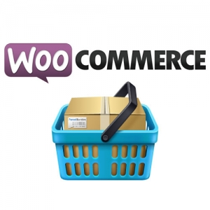 eCommerce website design, online store with woocommerce and wordpress by 702 pros: Web Design and SEO
