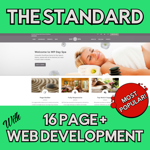 Standard Web Design - 702 pros web design and seo