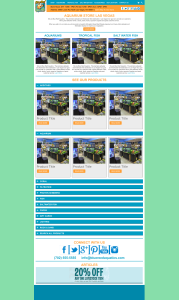 blue reef web design mockup