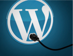 3 most useful wordpress plugins
