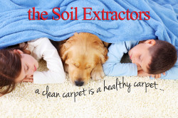 Soil Extractors – Carpet Cleaning