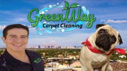 Best carpet cleaners in Las Vegas