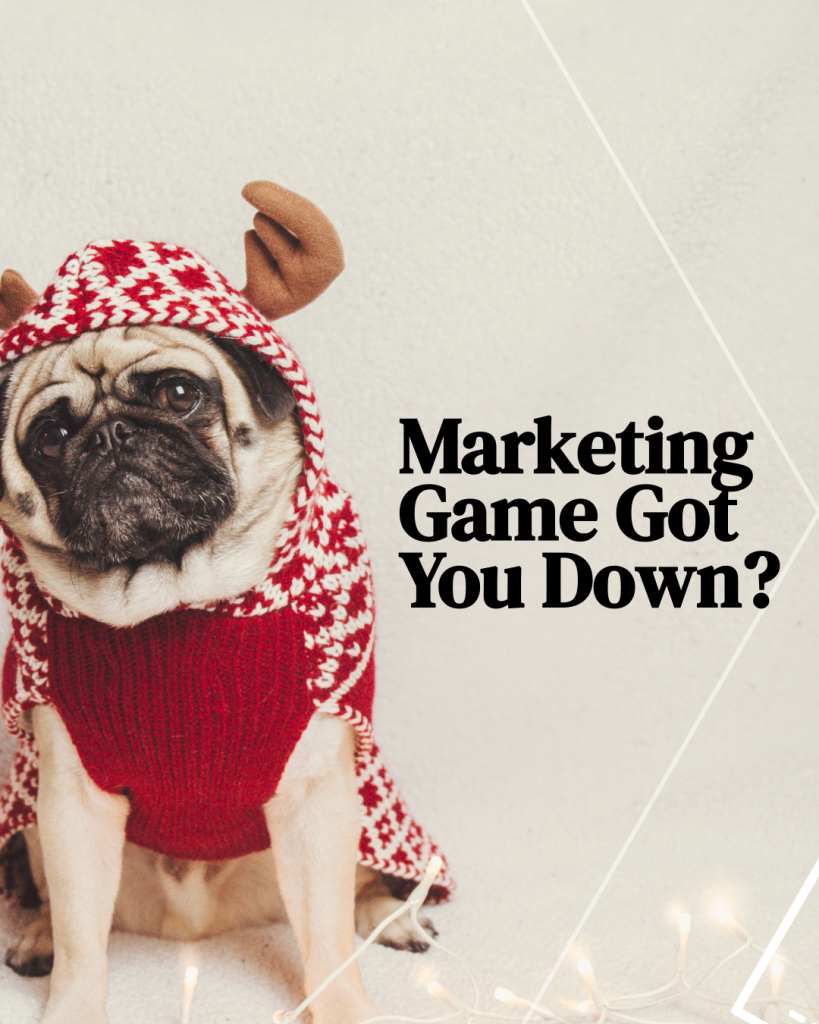 Marketing Game Got you Down - Funny Instagram Post of a Dog with Reindeer hat and sweater - Graphic Design by 702 Pros