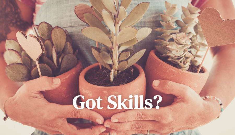 Got Skills \ What is a Dynamic Website?