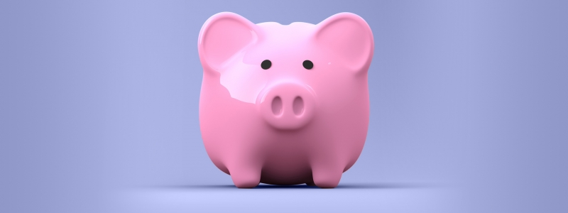 SparkMeta Piggy