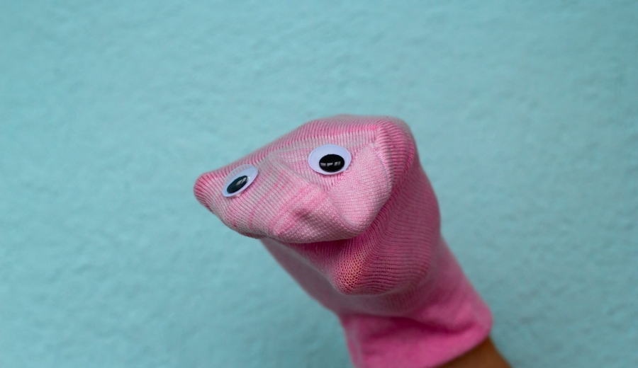 Funny Sock Puppet Photo | Website Redesign 2021